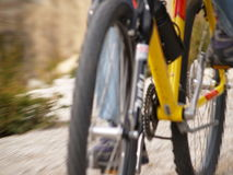 Mountain Bike in Motion. A mountain bike rides past on a gravel trail Royalty Free Stock Images