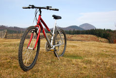 Mountain bike (mountainbike) Stock Image