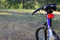 Mountain bike na floresta imagem de stock