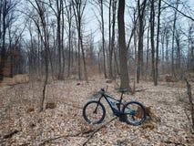 Mountain bike pelo CUBO na floresta fotografia de stock royalty free