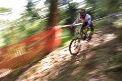 Mountain bike race Stock Photography