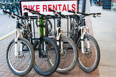 Mountain Bike Rentals Royalty Free Stock Photos