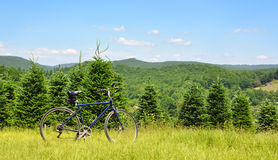 A biker's mountain bike in a meadow along the Virginia Creeper Trail Stock Images