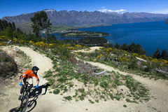 Mountain bike rider on bike path in Queenstown Royalty Free Stock Photos