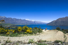 Mountain bike rider on bike path in Queenstown Royalty Free Stock Images