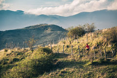 Mountain bike rider on single track trail in inspirational lands Stock Photography