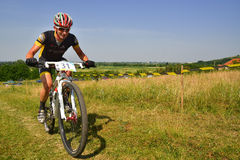 Mountain bike rider Stock Images