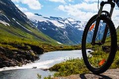 Mountain bike rider view Royalty Free Stock Photos