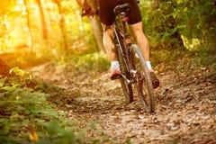 Mountain bike sport Royalty Free Stock Photography