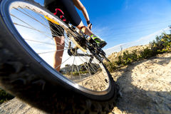 Mountain bike.Sport and healthy life royalty free stock images