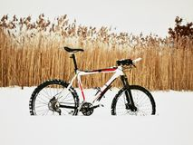 The  mountain bike stay in snow. Snow melting on dark off road tyre. The  mountain bike stay in snow. Lost path in deep snowdrift. Snow melting on dark off road Stock Images