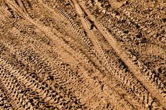 Mountain Bike Tracks Royalty Free Stock Image