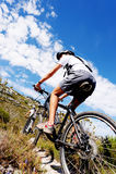 Mountain bike trail Stock Photography