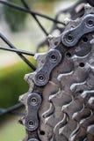 Mountain bike traseiro vertical fotos de stock royalty free