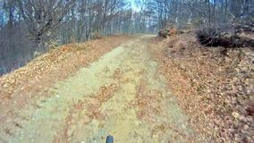 Mountain Bike traveling fast along dirt track. Deep in forest stock footage