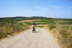 Mountain bike trip through fields and vineyards stock photo