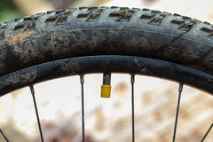 Mountain bike valve. With yellow cap Royalty Free Stock Images