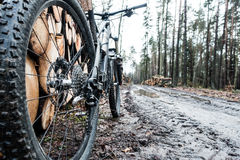 Mountain bike in wet mud fall woods Stock Photos