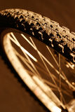 Mountain Bike Wheel Stock Photo