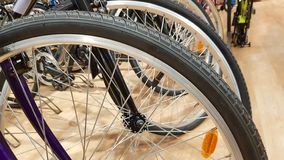 Free Mountain Bike Wheel Stock Images - 147296924