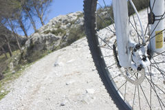 Mountain bike wheel Royalty Free Stock Image