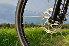 Mountain bike wheel with disc brake Stock Image