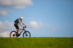 Mountain biker. Royalty Free Stock Images