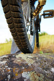 Mountain biker. Bicycle wheel standing on stone coated by lichen Stock Photos