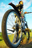 Mountain  biker Royalty Free Stock Photos