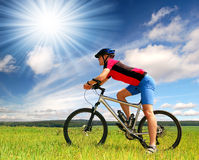 Mountain biker. Portrait of bikers riding the mountain bike Royalty Free Stock Image