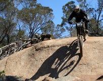 Mountain biker Stock Images