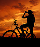 Mountain biker. Silhouette in sunrise Royalty Free Stock Images