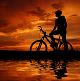 Mountain biker. Silhouette in sunrise Royalty Free Stock Photo