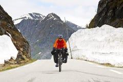 Mountain biker Stock Image