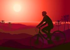 A mountain biker. At sunset Royalty Free Stock Image