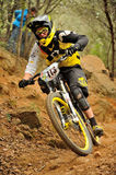 Mountain biker Anne Carolin Chausson - Enduro racer Royalty Free Stock Photos