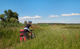 Mountain biker beside a beautiful river Royalty Free Stock Image