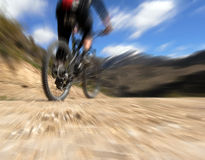 Mountain biker from behind, riding Royalty Free Stock Image
