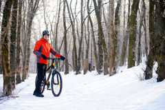 Mountain Biker with Bike on the Snowy Trail in Beautiful Winter Forest Stock Images