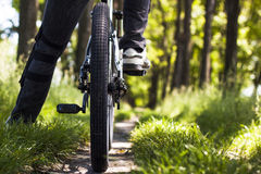 Mountain biker. Close up of mountain biker in the forest Royalty Free Stock Photos