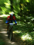 A mountain biker colourful royalty free stock images