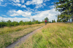 Mountain biker cycling riding in woods and mountains Stock Photography