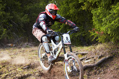 Mountain biker on downhill rce Royalty Free Stock Image
