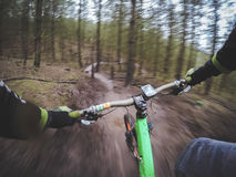 Mountain biker in a forest Royalty Free Stock Images