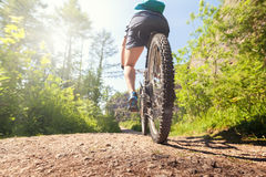 Mountain biker on a forest trail Stock Photos