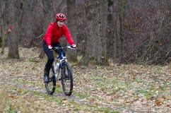 Mountain biker in the forrest