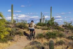 Mountain Biker Heading Up A Desert Trail In Arizona stock photography