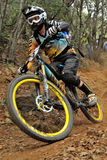 Mountain biker Joe Barnes - Enduro racer Stock Photo