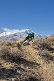 Mountain Biker Leans Into Turn Royalty Free Stock Photo
