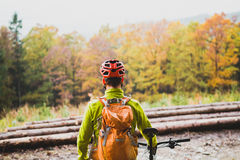 Mountain biker looking at inspiring forest landscape Royalty Free Stock Photos